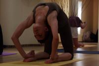 Intensywny warsztat jogi ashtanga z Basią Lipską - Zdjęcia 3