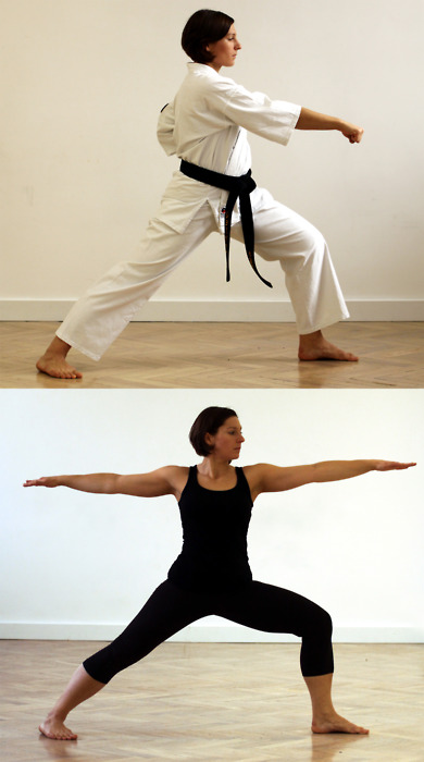 Yoga & Martial Arts